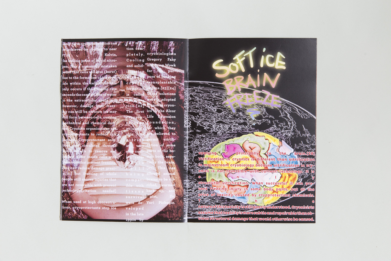 Sofr Ice Cream Zine